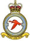 51 Squadron RAF Badge