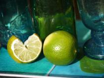 Lime Still Life - Sally-Anne Lenton